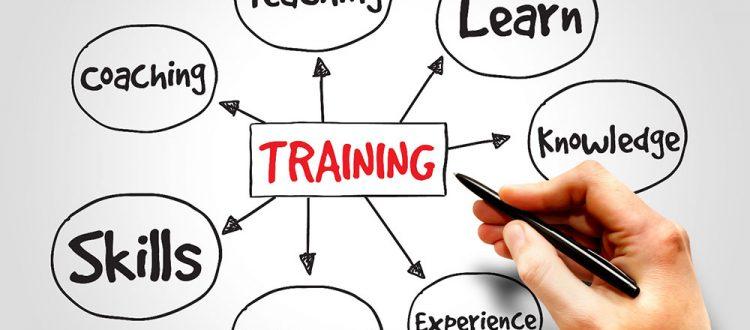 T24 training